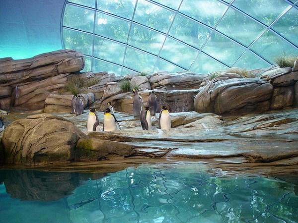 western zoological park